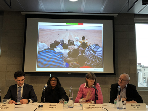 Members of a panel on climate change and migration at a March 20 seminar at Columbia University as part of launch activities for the World Bank report, Groundswell: Preparing for Internal Migration. Left to right: Craig Spencer, Amali Tower, Sarah Rosengaertner, and Richard Balme.
